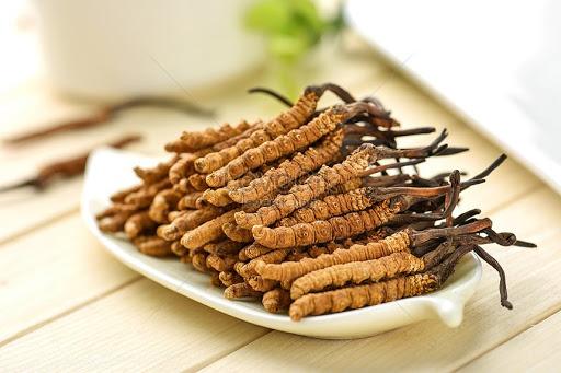 Các món ăn và bài thuốc từ Đông trùng hạ thảo